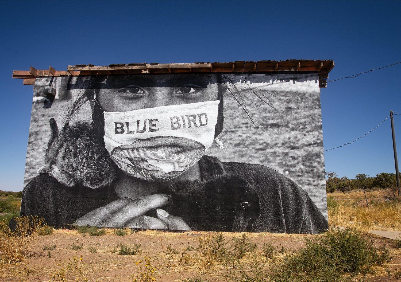 Sing Me A Song, Bluebird
